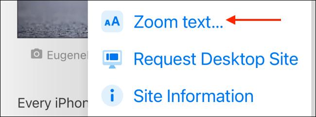 Click Zoom Text.