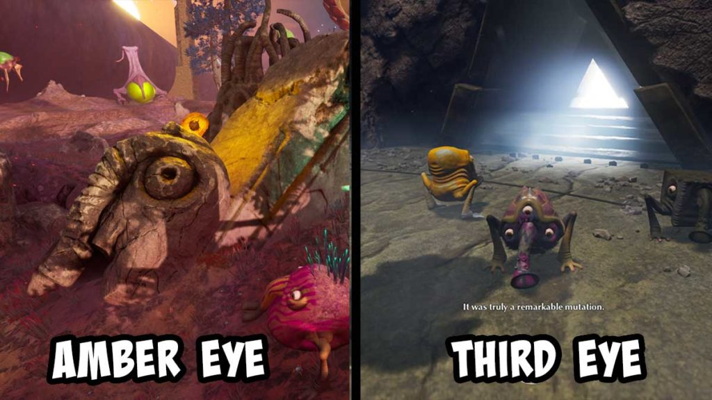 higher mutations of the third eye the eternal cylinder
