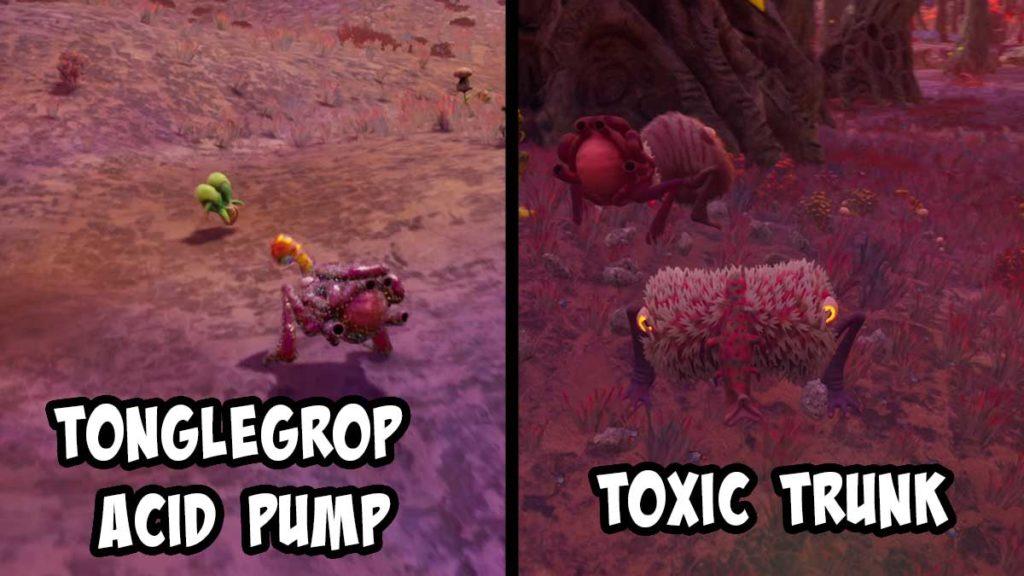 toxic-trunk